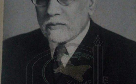 پرو فیسر سید  وزیر الحسن عابدی