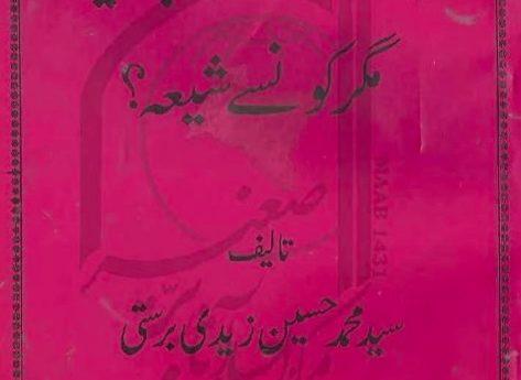 شیعہ جنت میں جائیں گے مگر کون سے شیعہ؟